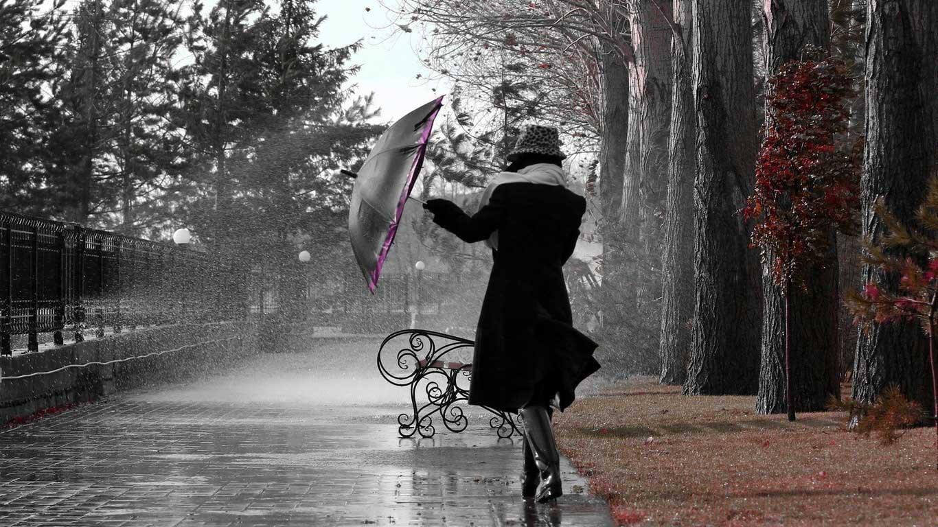 Картинки девушка дождь осенью
