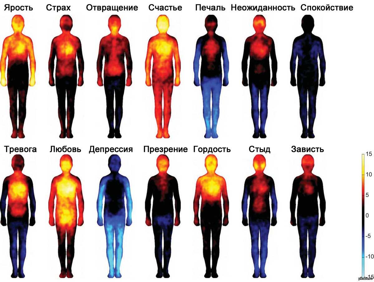 карта-тела-во-время-эмоциональности